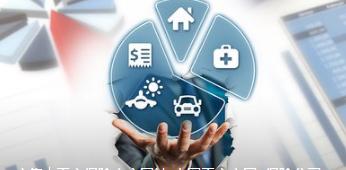 我国保险业推出首个保单全口径查询通道